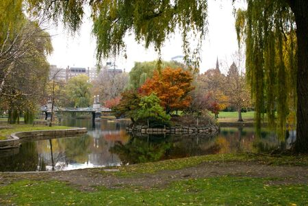 beautiful colorful autumn image of the boston public gardens photo