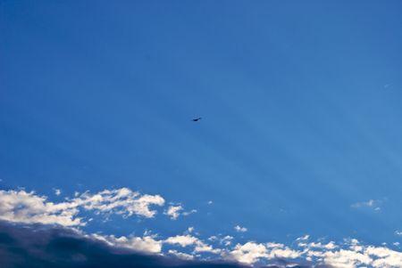 空の光、雲の後ろから空を見上げて、太陽光線として高く飛ぶカモメ 写真素材