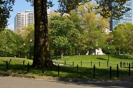 boston common: scenic view of the boston common on a sunny day showing trees, grass, walkways