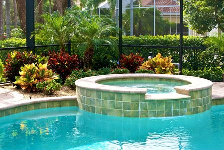 hot tub: detail of swimming pool surrounded by plants and screened in lanai.