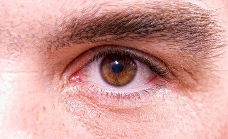 close up von einem braun männliche Auge mit Augenbrauen Standard-Bild