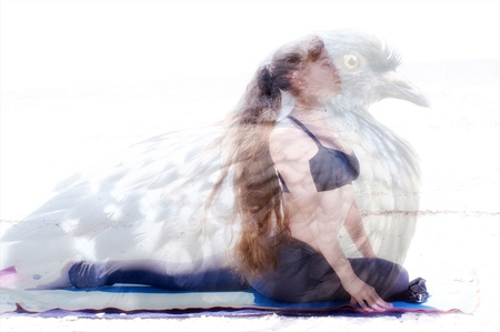 embody: A woman is in yoga pigeon pose with image of actual pigeon superimposed