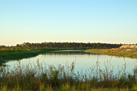 swampy: Scenic view of a peaceful pond in a swampy area of rural florida at sunset