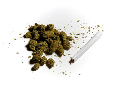 medicinal marijuana: Medicinal marijuana on white with a joint, side lighting
