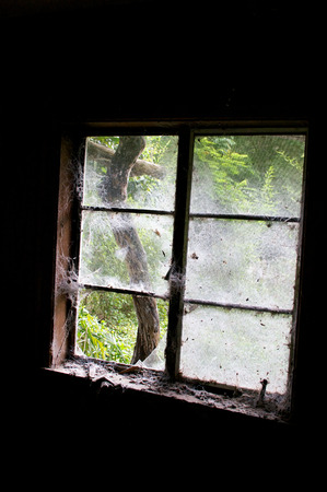 Looking out cobweb and dust covered window from inside an old abandoned house, inside the room is dark.