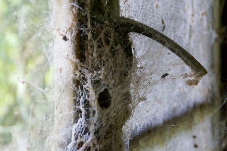Close-up van een spinnenweb bedekt raam vergrendeling in een verlaten huis