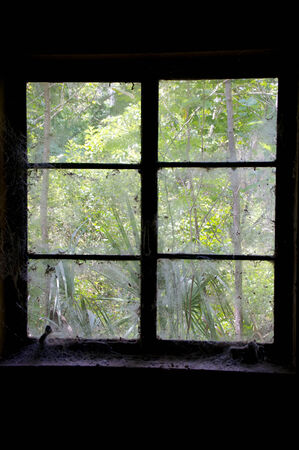 Looking out cobweb and dust covered window from inside an old abandoned house, inside the room is dark
