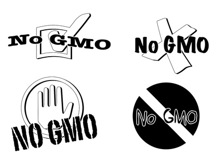Four different illustrations of the slogan no gmo finished in simple black and white
