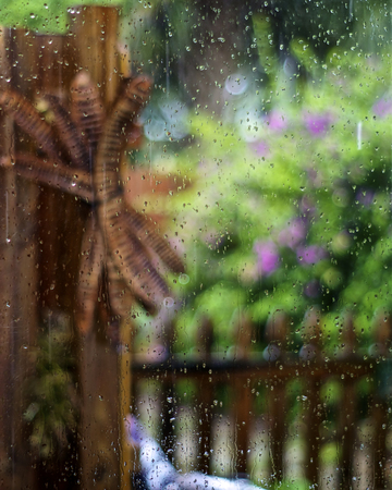 Looking through a rain soaked window out towards a colorful lush garden, focus is on rain drops on glass with garden out of focus.