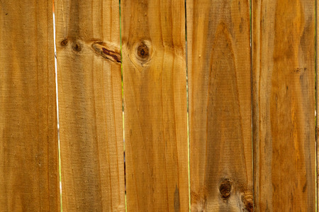stockade: Aged, natural wooden slats of stockade fence.