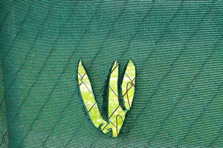 chain link fence: A green chain link fence covering with a tear that looks like it was made with claws.