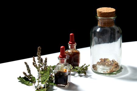 goteros: Dos botellas cuentagotas pequeñas con aceites esenciales de extractos herbarios y frasco grande con hierbas secas y rama seca de la planta de pachulí. Los aceites son pachulí y romero.