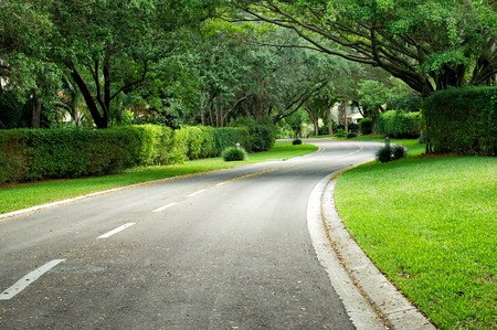 well maintained: A beautifully landscaped road curves around the corner in Naples Florida, clean and well maintained lined with trees and hedges.