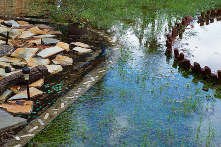 View of the sky reflecting in flooded area of backyard after heavy summer rains in Naples, Florida.