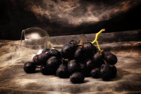 Bunch of black seedless grapes with wineglass on gray mottled background, set up, composed and photographed to resemble old fashioned still life painting.