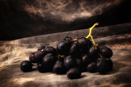 Zbliżenie na kiść czarnych winogron bez pestek na szarym cętkowanym tle, skonfigurowane, skomponowane i sfotografowane, aby przypominały staroświeckie malarstwo martwej natury. Zdjęcie Seryjne