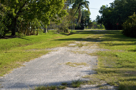 View of abandoned side road in bonita springs florida, with pavement, ruts and overgrown with grass.