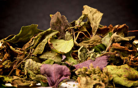Eye level view of pile of colorful dried patchouli leaves and flowers against dark background. 免版税图像