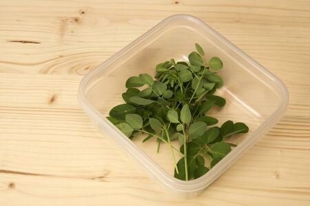 Bunch of freshly cut moringa oleifera leaves, also known as drumstick tree, in container on plain wooden background. Known as a superfood and used as alternative medicine.