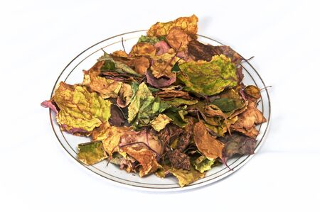 A pile of dried colorful autumn or fall leaves on white plate, not isolated. Banco de Imagens