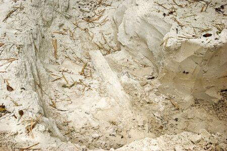 Hole dug in fine soft white dirt known as sugar sand in southwest florida.