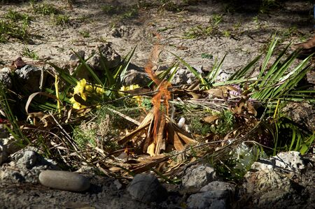 View of freshly prepared and lit mayan indian ceremonial fire with flowers and herbs. Banco de Imagens