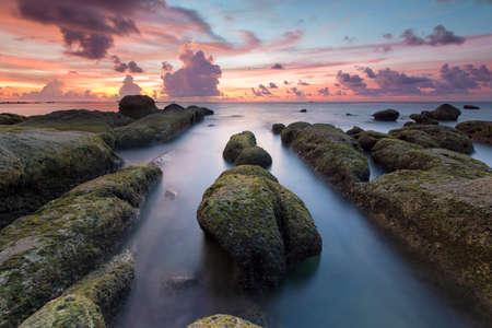 mosses: Beautiful Sunset