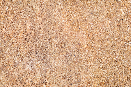 Sawdust or wooden dust texture.