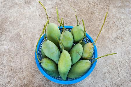 Fresh Green mangos in blue basket on the floor.