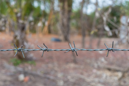 Barbed wire fence in farm.