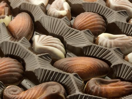 Chocolate candies in a box in form marine animals photo