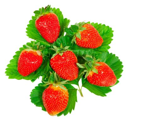 ripe, juicy strawberry on green leaves  photo