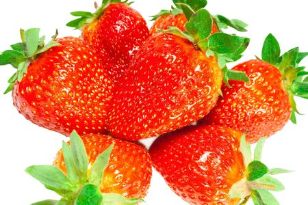 large, ripe strawberries on a white background photo