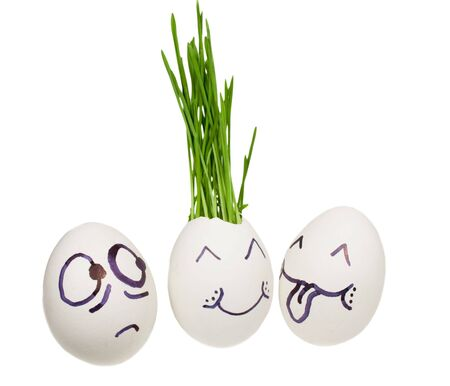 germinate: Chicken egg with a germinating grass.  Ludicrous image of in love persons