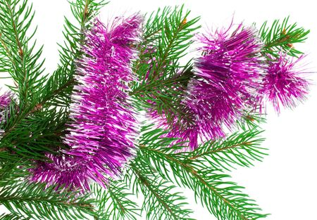 Christmas and new-year decorations. Fir tree branch with tinsel decoration on a white background     photo