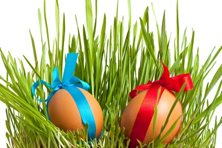 decorated easter eggs in the grass on a white background Stock Photo - 9278411