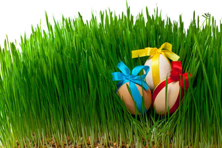 decorated easter eggs in the grass on a white background photo