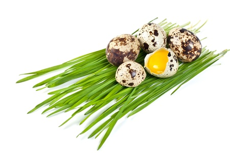 few quail eggs on a green grass isolated on a white background