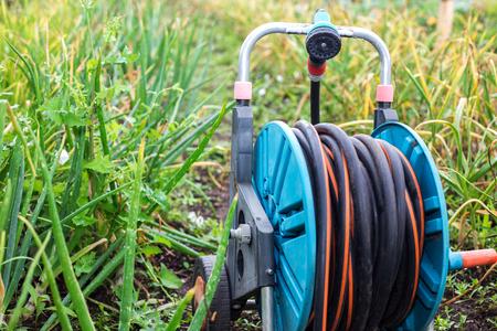 An image of a garden hose. Hose for irrigation Stock Photo