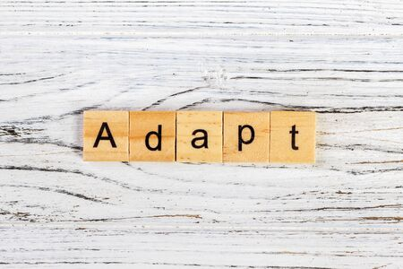 ADAPT Word Written In Wooden Cube concept Stock Photo