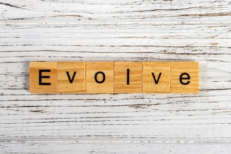 EVOLVE word made with wooden blocks concept