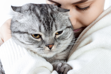 Beautiful young woman holding little kitten in hands and bonding to him. Stock Photo