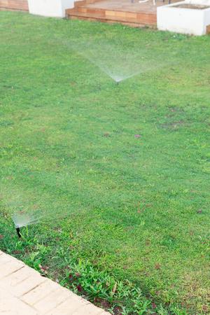 Irrigatore in giardino che innaffia il prato. Concetto di prati d'irrigazione automatica.