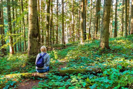 Girl traveler sits on a tree among the forest.
