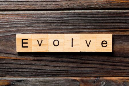 EVOLVE word written on wood block. EVOLVE text on wooden table for your desing, concept. Stok Fotoğraf
