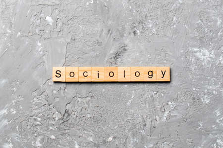 Sociology word written on wood block. Sociology text on cement table for your desing, concept. Reklamní fotografie