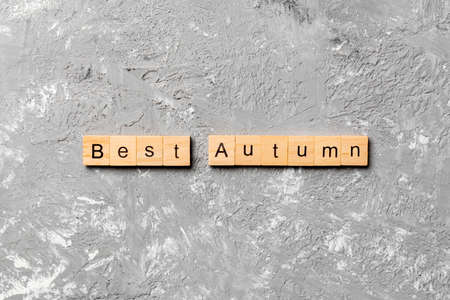 best autumn word written on wood block. best autumn text on cement table for your desing, concept.