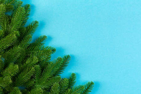 Top view of colorful background made of green fir tree branches. New year holiday concept with copy space.