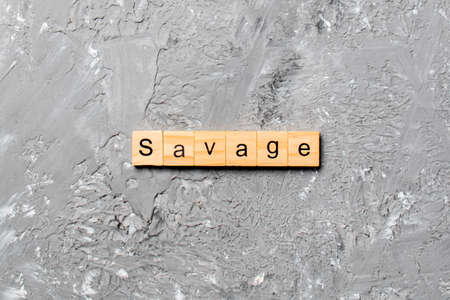SAVAGE word written on wood block. SAVAGE text on cement table for your desing, concept. 免版税图像