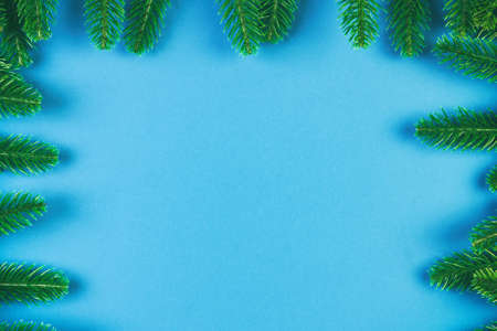 Top view of frame made of fir tree on colorful background with copy space. Merry Christmas concept.